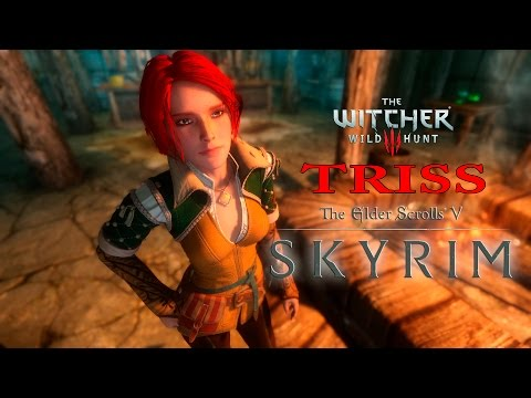 Baixar skyrim witcher followers - Download skyrim witcher followers
