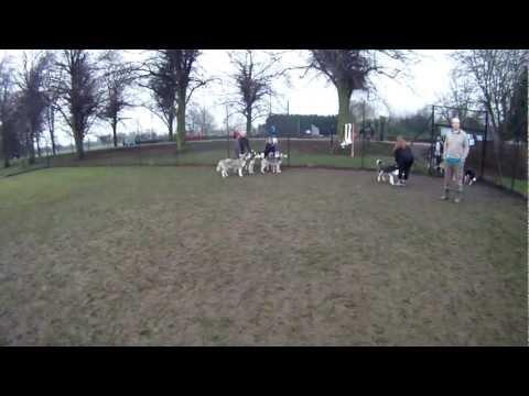 New Camera Test - Darley Park Derby