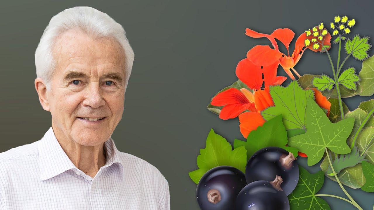 Nährstoffe, die deinen Körper schützen (unbedingt essen!)