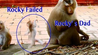OMG So Pity Baby Rocky Jump Down Failed Push Body To Cement Cry Confuse Marima Like As His Mama Rozy