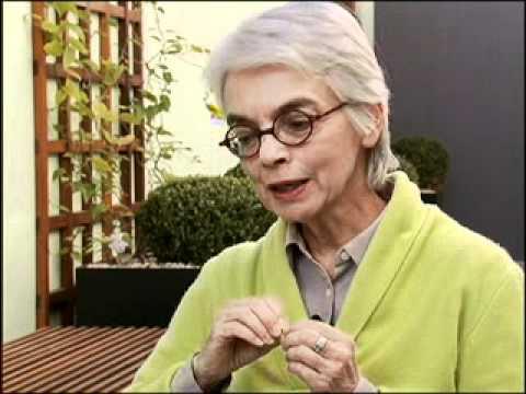 DO PROFESSOR TITITICA BAIXAR VIDEOS