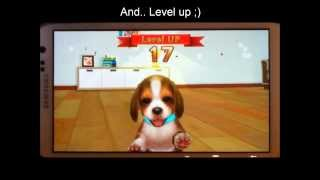 "My first dog - How to ""cheat"" affection and level up faster"
