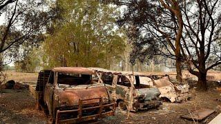 Buschbrände: New South Wales und Queensland rufen Notstand aus
