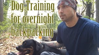 Training dog for overnight backpacking 1