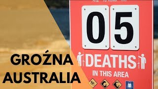 Niebezpieczne zwierzęta w Australii
