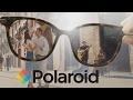 Polaroid Polarised Sunglasses - Selectspecs.com