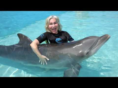 Atlantis Swimming With The Dolphins Mattress Giant