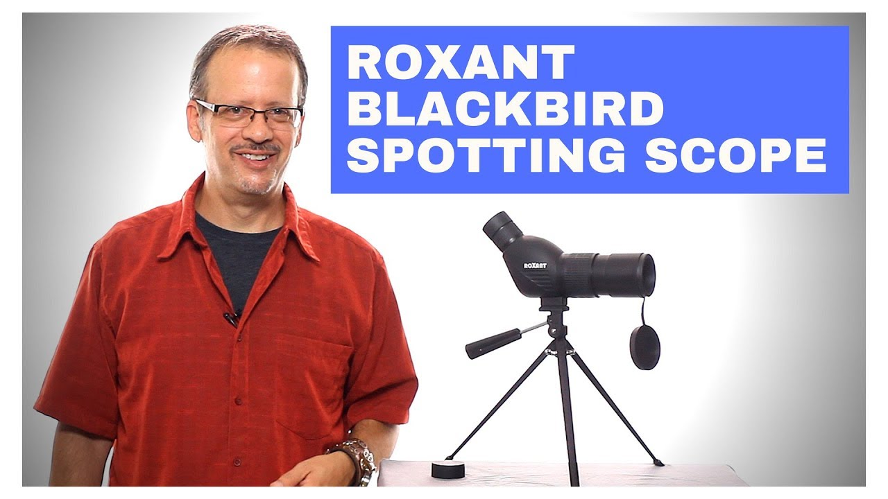 Blackbird Spotting Scope video thumbnail