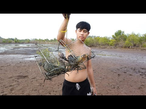HUNTER SEA CRAB - Catching Mud Crab At The Swamp After Water Go Down