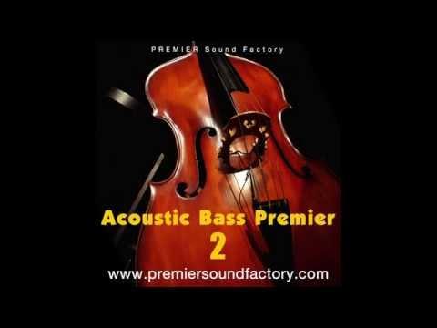 Acoustic Bass Premier2