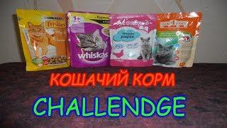 Кошачий корм ЧЕЛЕНДЖ/Cat food CHALLENGE