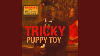 Puppy Toy (Tom Elmhirst Radio Edit)