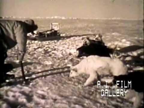 Living with Eskimos, TV series, Bold Journey
