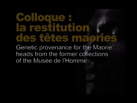 Genetic provenance for the Maorie heads... (Restitution des