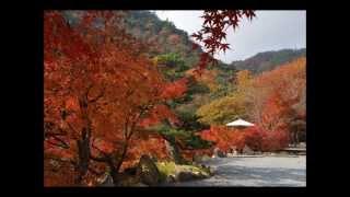 兵庫県の歌  ふるさと兵庫