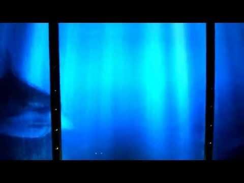 Prehistoryczne Oceanarium