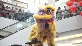 Ketemu Barongsai | Lion Dance Chinese New Year at Living World Alam Sutera - FarrelErkhan