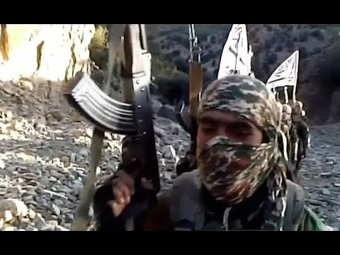 Download Youtube: Taliban 'never shared Al-Qaeda's perspective' – journalist