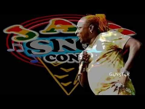Elephant Man - Ting Dem (Raw) - Nuh Fraid Riddim - Jah Snowcone Entertainmet - March 2014