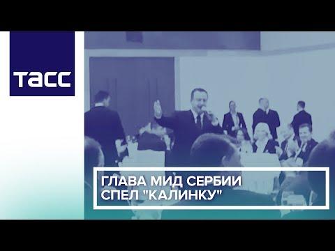 Глава МИД Сербии спел 'Калинку'