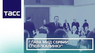 "Глава МИД Сербии спел ""Калинку"""