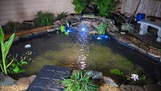 The BACKYARD POND is DONE! Part 3 thumbnail