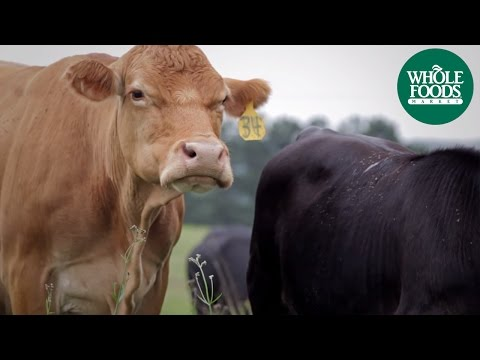 Proffitt Farms Grass-Fed Beef | Meet the Ranchers | Whole Foods Market