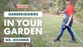 Gardening in December | Western Australia | Bunnings Garden Diary