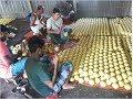 দেখুন কিভাবে বল সাবান তৈরি করা হয়। দেশীয় সাবান কারখানা