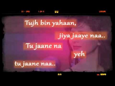 SRISHTI SHARMA Tu jaane na Lyrics with Images