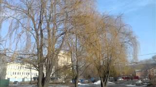 Видео о природе Владивостока на урок МХК