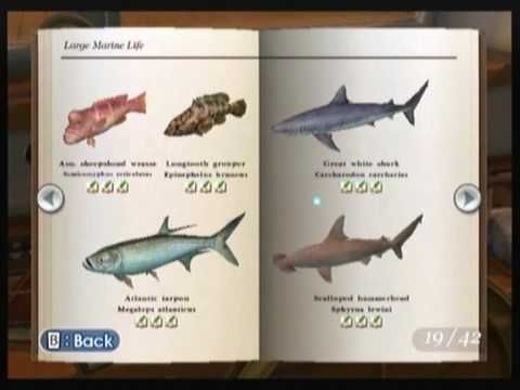 Endless Ocean: All Fish - Complete Book