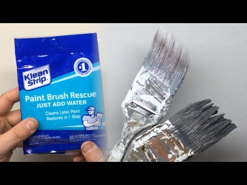 "How to Save Dried Paint Brush - ""Paint Brush Rescue"" Review"