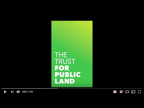 Learn more about the Trust for Public Land's NYC Playgrounds Program