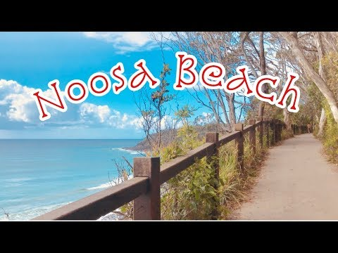 Noosa Beach - Holiday In Australia