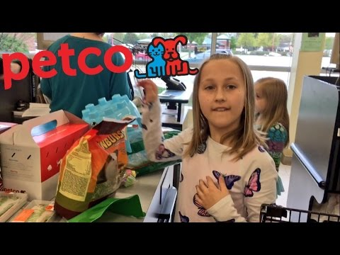 BUYING GUINEA PIGS AT PETCO AND DADDY (Grims Toy Show) REACTS ANGRY!