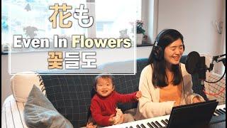 원어로 부르는 🇰🇷꽃들도   🇯🇵 花も Hanamo   🇺🇸 Even in Flowers   cover by Gina