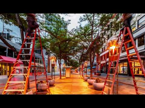 Downtown Denver Partnership Leadership Program: Urban Tangle Timelapse