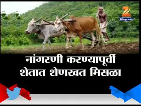 Dhule Problems To Farmers In Farming