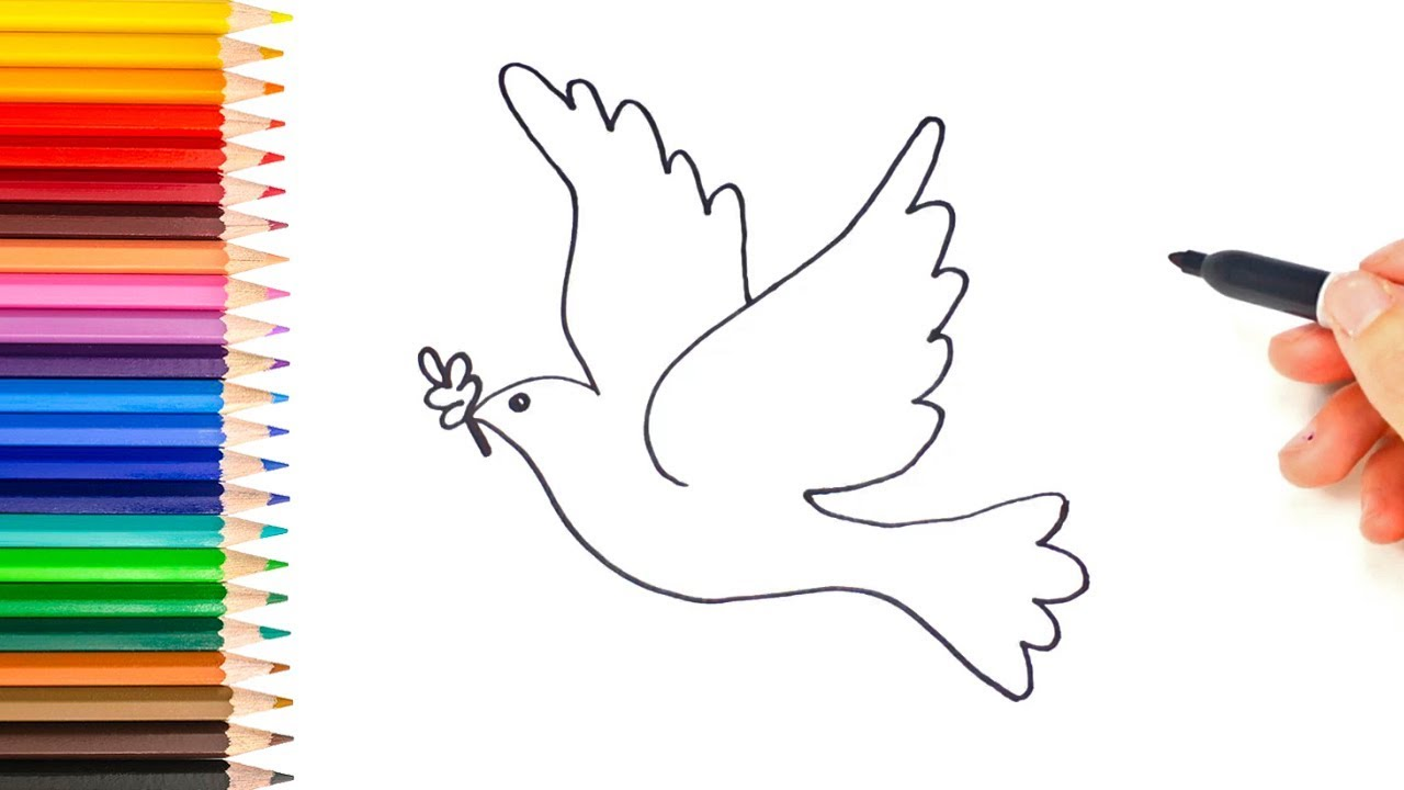 Como Desenhar A Pomba Da Paz Desenho De Pomba Da Paz Youtube