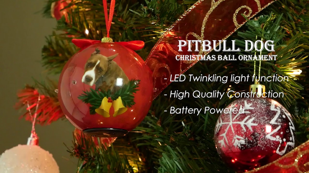 Pitbull Christmas Ornament.Cuecuepet Dog Collection Twinkling Lights Christmas Ball Ornament Pitbull