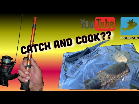 Catch N Cook ( New Mexico Trout )