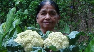 Village Foods - Frying Cauliflower in my Village by my Mom