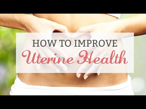 Improving Uterine Health for Fertility, Conception and