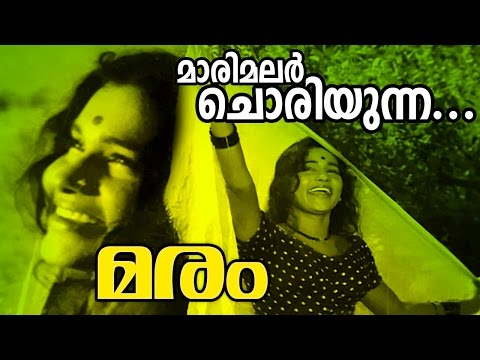 Maarimalar Choriyunna... | Evergreen Malayalam Movie Song | Maram Movie Song