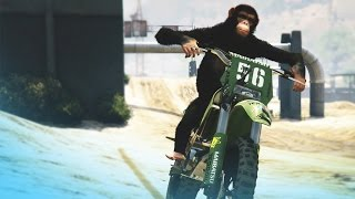 "GTA 5: ""The Skit Show"" - Episode 1"