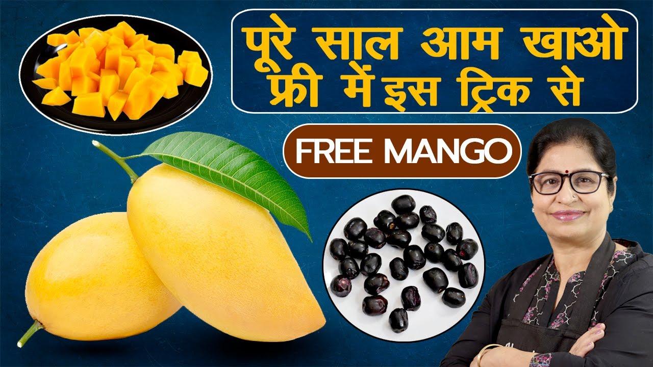 यह 1 चीज करने से मिलेंगे मौसमी फल पूरे साल | Mango/Jamun Storage Hacks | Amazing Fruit Storage Idea