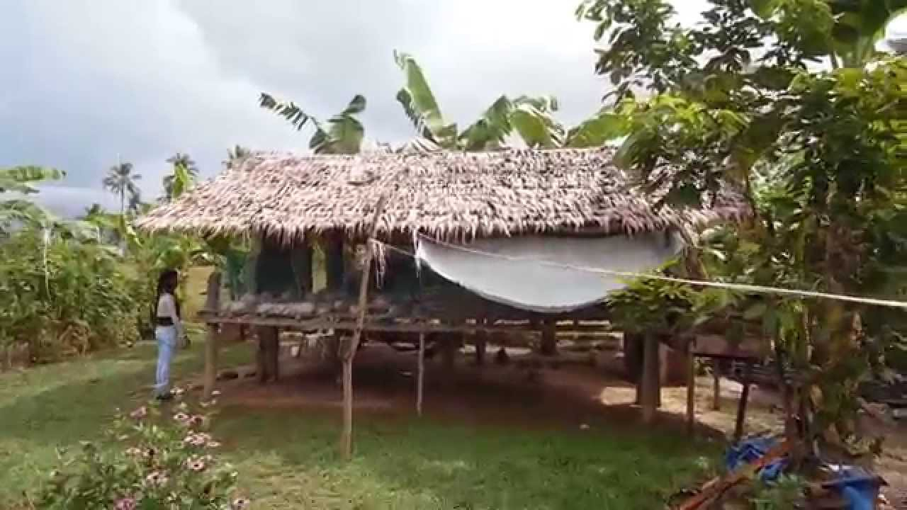 Helping families in the philippines building chicken coops