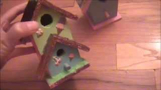 Cute Craft Saturdays! Week 1- Adorable Birdhouses
