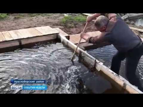 Фермер из Красноборского